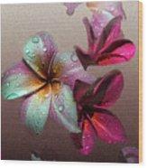 Frangipani With Overlay Wood Print
