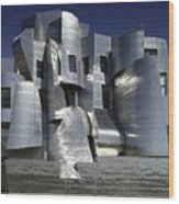 Frank Gehry Designed The Frederick R Wood Print by Everett