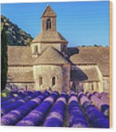 All Purple, Cistercian Abbey Of Notre Dame Of Senanque, France  Wood Print