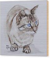 Frankie The Cat Wood Print