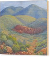 Franklin Mountain Morning Wood Print