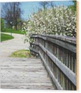 Franklin Park Conservatory Footbridge Wood Print