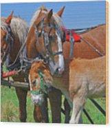 Franklinville Plowfest 1417b Wood Print