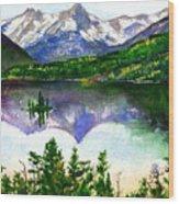 Franks Painting Wood Print