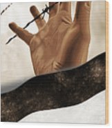 Free Palestine Wood Print