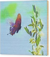 Free To Fly - Butterfly In Flight Wood Print