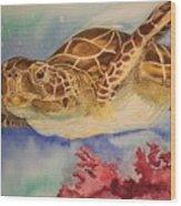 Free To Swim Wood Print