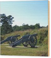 Freedom At Yorktown Wood Print
