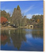 Freedom Park Bridge And Lake In Charlotte Wood Print