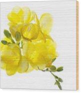 Freezia Bouquet Wood Print