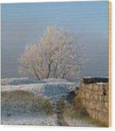 Freezing Tree Wood Print