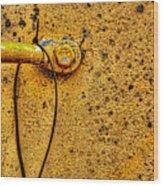 Freight Car Ladder Detail Wood Print