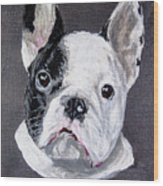 French Bulldog Close Up Wood Print