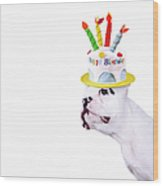 French Bulldog With Birthday Cake Wood Print by Maika 777