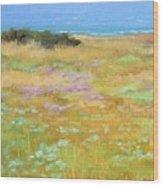 French Coastal Landscape Wood Print