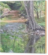 French Creek Wood Print