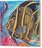 French Kiss-juvenile French Angelfish Wood Print by Kelly     ZumBerge