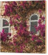 French Windows Wood Print
