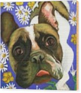 Frenchie Plays With Frogs Wood Print