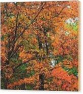 Fresco Autumn Diptych Left Wood Print