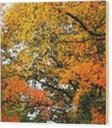 Fresco Autumn Diptych Right Wood Print