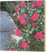 Fresco Roses Wood Print