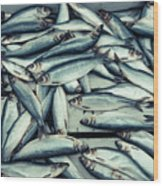 Fresh Caught Herring Fish Wood Print