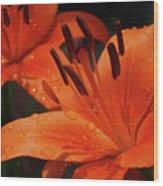 Fresh Floral Delight Wood Print