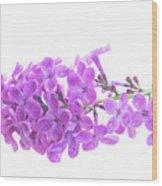 Fresh Lilac Wood Print