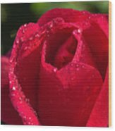 Fresh Rose Wood Print