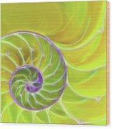 Fresh Spiral Wood Print