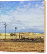 Fresno County Pastoral Wood Print
