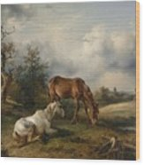 Friedrich Gauermann A Grey And A Chestnut In The Pasture  1825 Wood Print