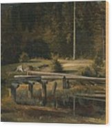 Friedrich Voltz 1817 Nordlingen   Munich 1886 Forest Clearing At A Pond Wood Print