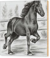 Friesian Horse Wood Print