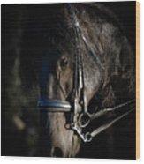 Friesian Horse Portrait Dark Wood Print