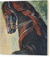 Friesian Sunset Wood Print