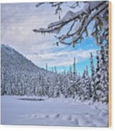 Frigid Beauty Wood Print