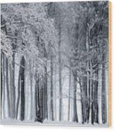 Frigid Forest Wood Print
