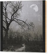 Frigid Moonlit Night Wood Print