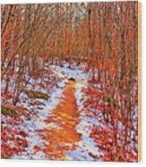 Frigid Walk Wood Print