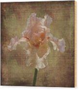 Frilly Iris Wood Print
