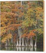 Frio River #5 2am-27571 Wood Print