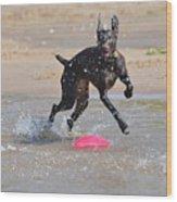 Frisbee On The Beach Wood Print