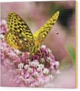Fritillary Butterfly On Flowers Wood Print