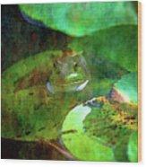 Frog And Lily Pad 3076 Idp_2 Wood Print