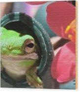 Frog At Selby Wood Print