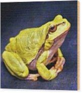 Frog - Id 16236-105000-7516 Wood Print