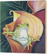 Frog In Gold Calla Lily Wood Print by Lyse Anthony