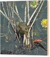 Frog On A Stick Wood Print